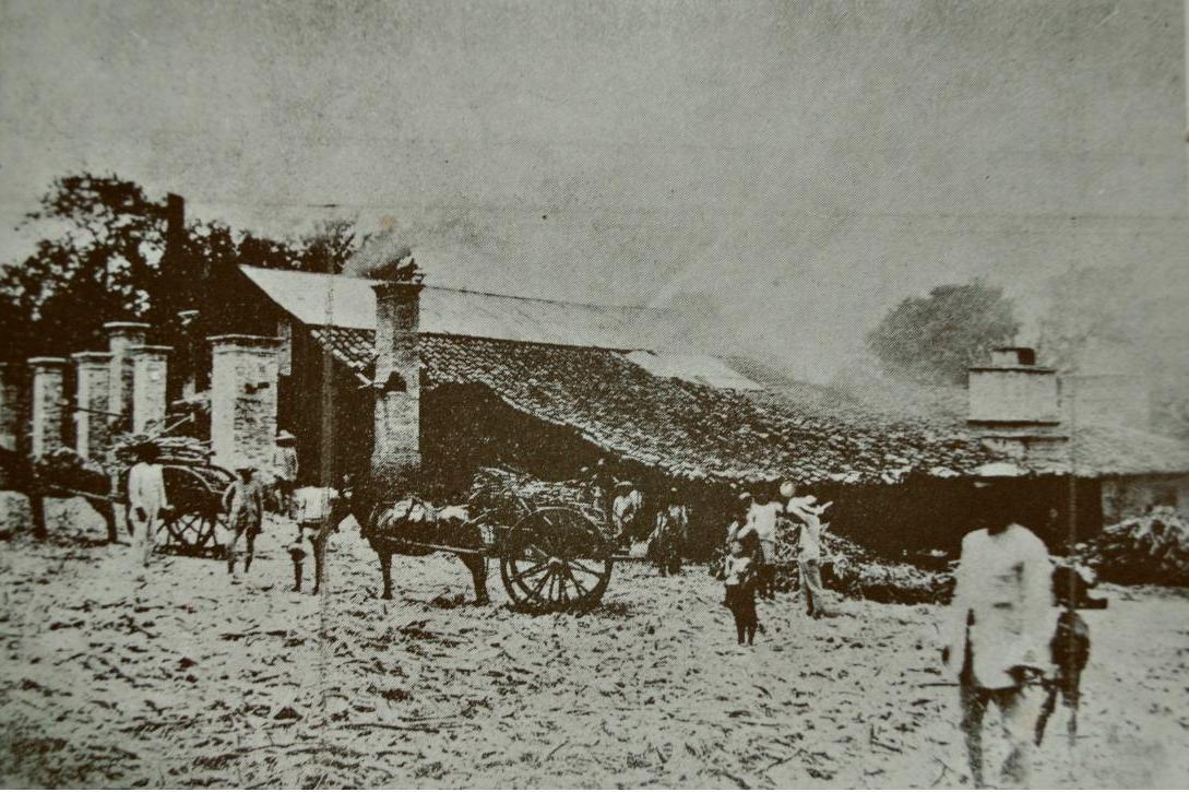 Hacienda Tarabana 1928