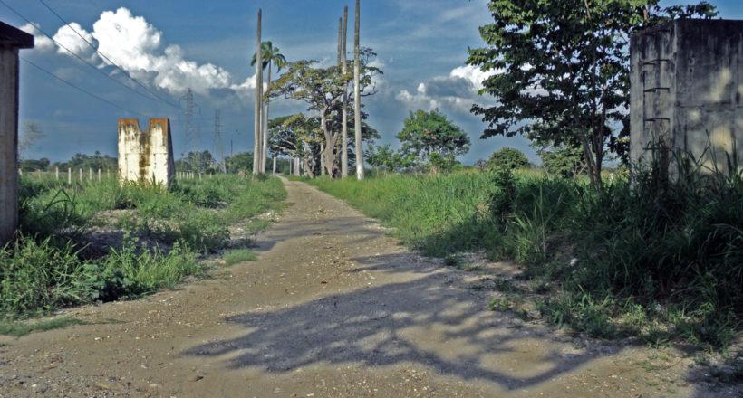 Antiguo camino de Las Maporas o callejón de la Alianza. Sabanas de Tarabana