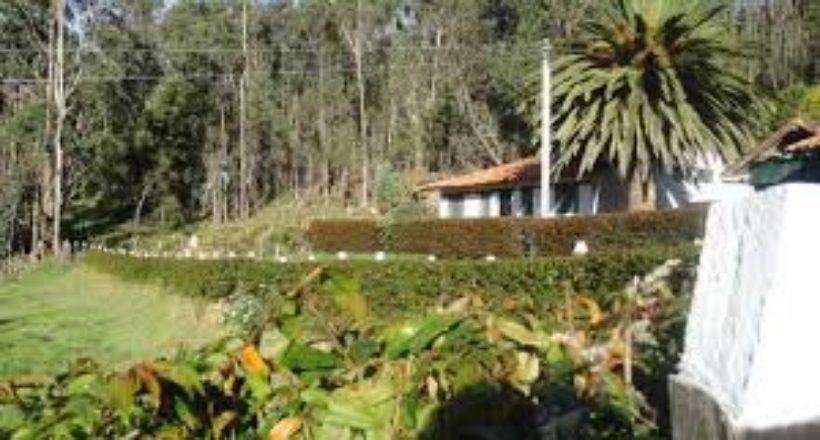 Hacienda Agua Viva, municipio Palavecino