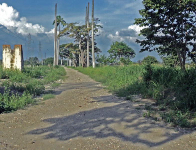 Antiguo-camino-de-Las-Maporas-o-callejón-de-la-Alianza.-Sabanas-de-Tarabana-820×440